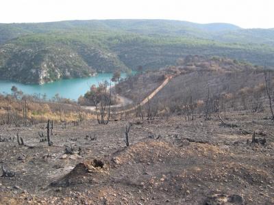 Après l'incendie de 2005 à Esparron